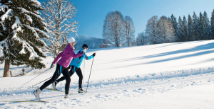 More Cross Country Ski Links and Info